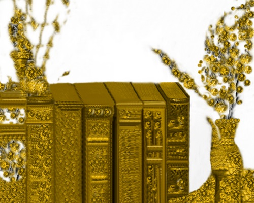 Półka z książkami  do tekstu PAP, grafika JPG 2, Stefania Pruszyńska