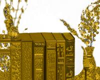 Półka z książkami, ikona, Stefania Pruszyńska