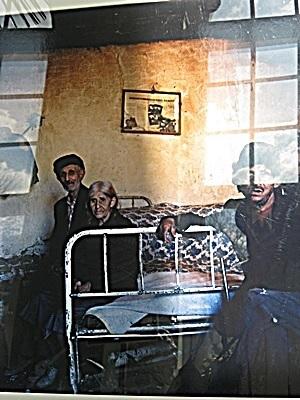 3-piekno-w-roznorodnosci-wystawa-w-lazienkach-krolewskich-2011-fot-stefania-pruszynska